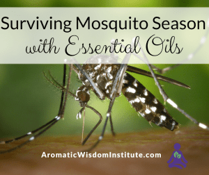 Surviving Mosquito Season Essential Oils
