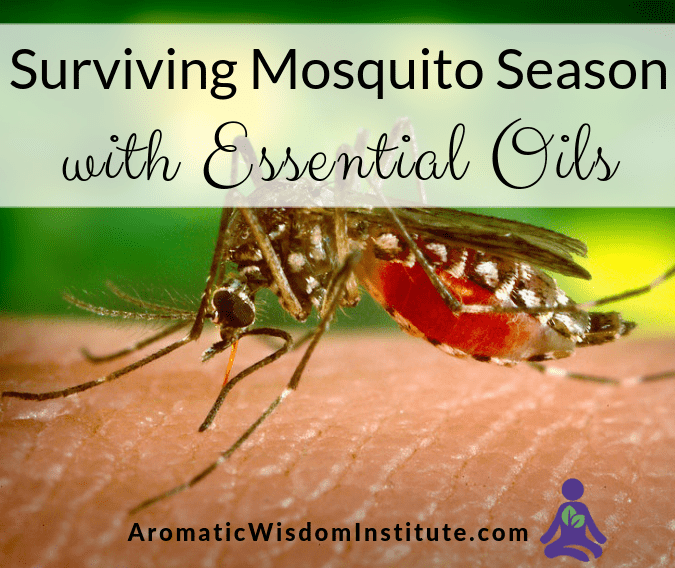 Surviving Mosquito Season with Essential Oils