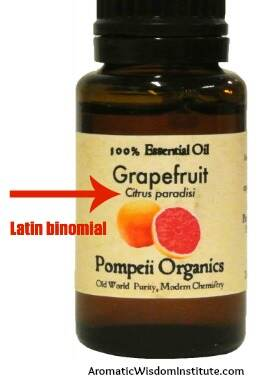 pompeii-grapefruit-text
