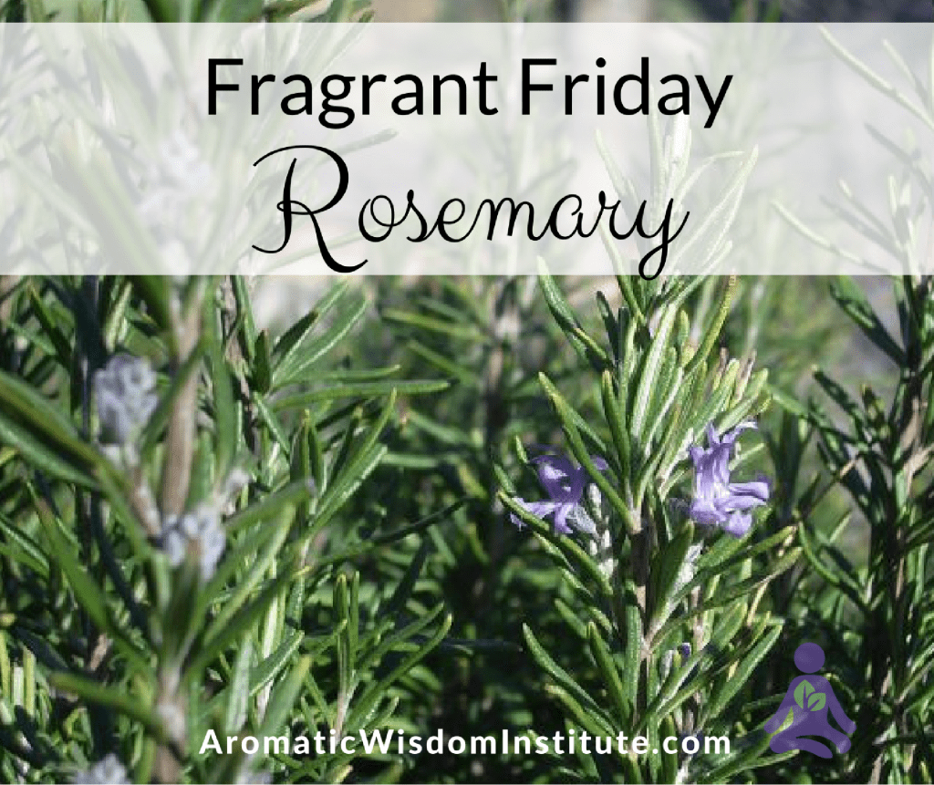 ff-rosemary-graphic