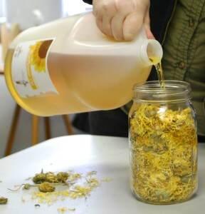 Pouring-OilinCalendula