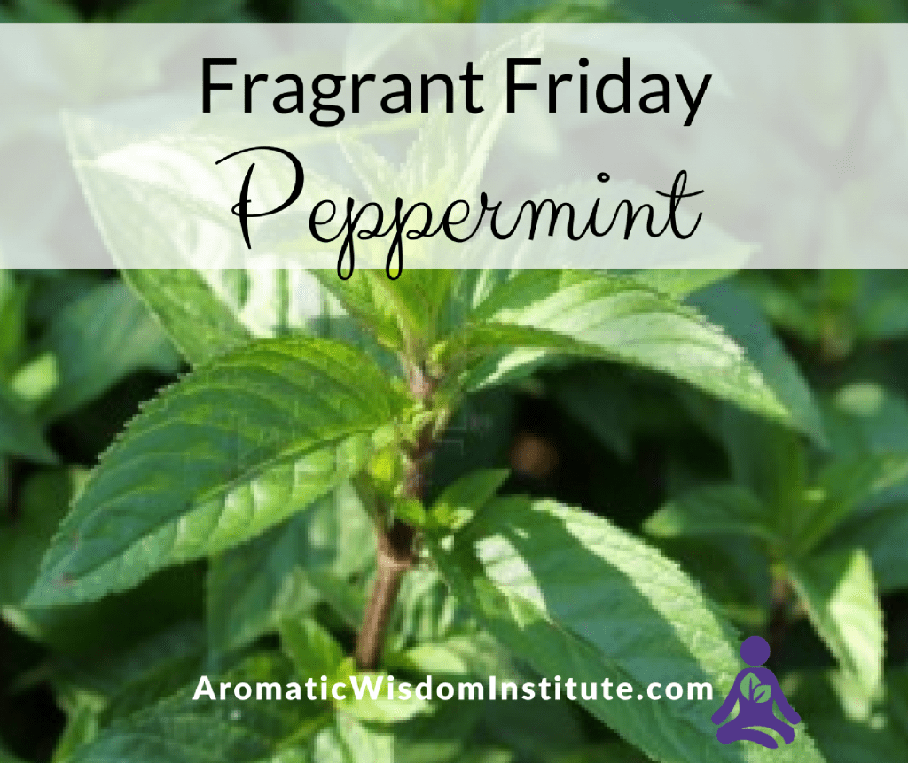 Fragrant Friday Peppermint