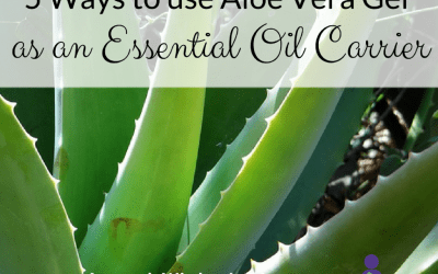 5 Ways to use Organic Aloe Vera Gel as an Essential Oil Carrier  *Updated May 2019*