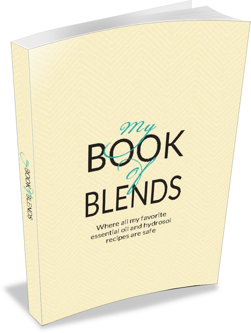 my-book-of-blends-recipes-3d