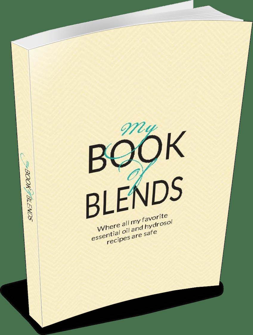 my-book-of-blends-recipes-3d