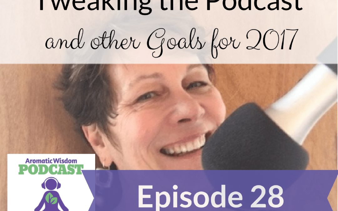 AWP 028: Tweaking the Podcast and Other Goals for 2017