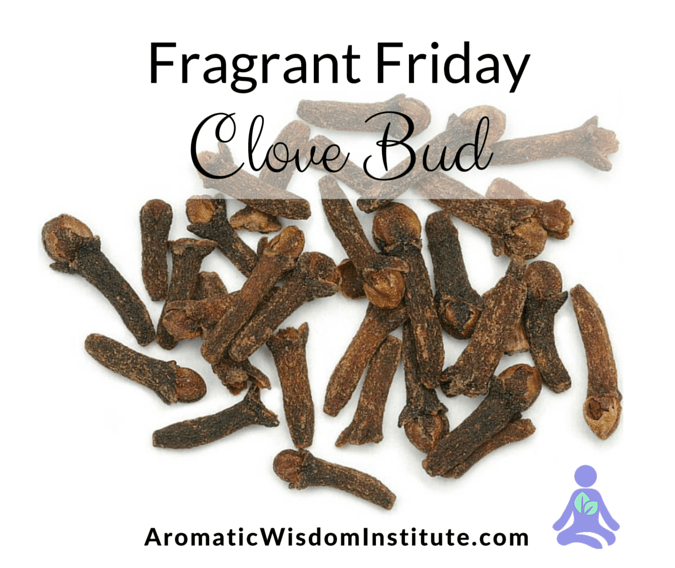 Fragrant Friday: Clove Bud (Eugenia caryophyllata)