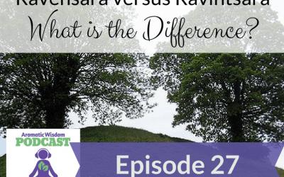 AWP 027: Ravensara versus Ravintsara – What's the Difference