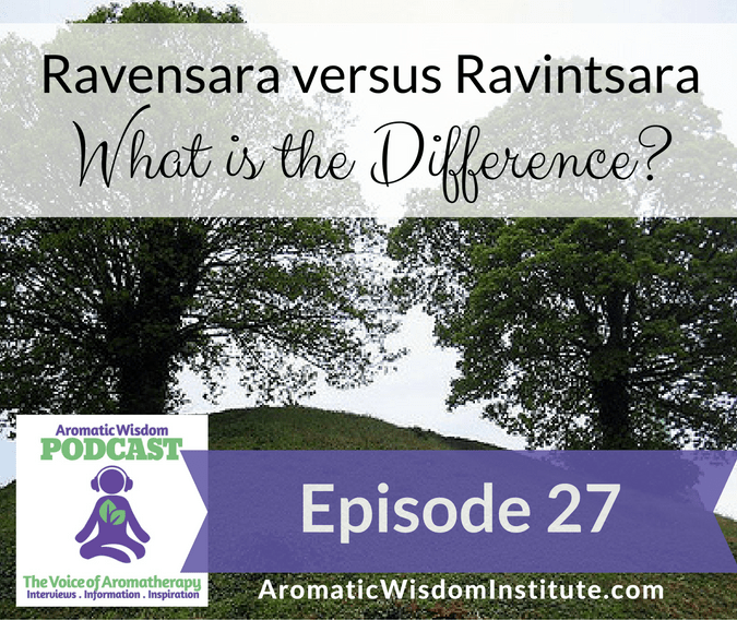 AWP 027: Ravensara versus Ravintsara – What's the Difference