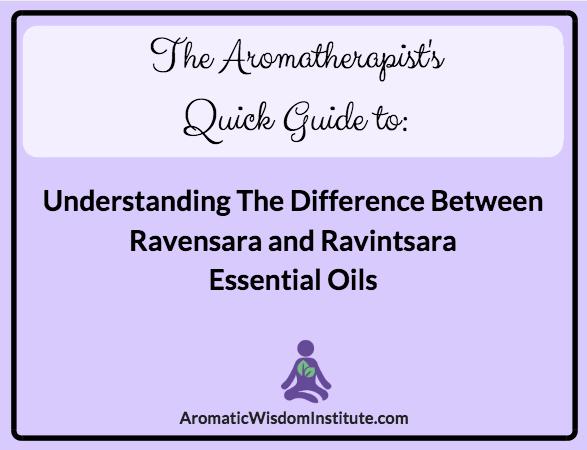 aromatherapists-quick-guide-ravensara-ravintsara