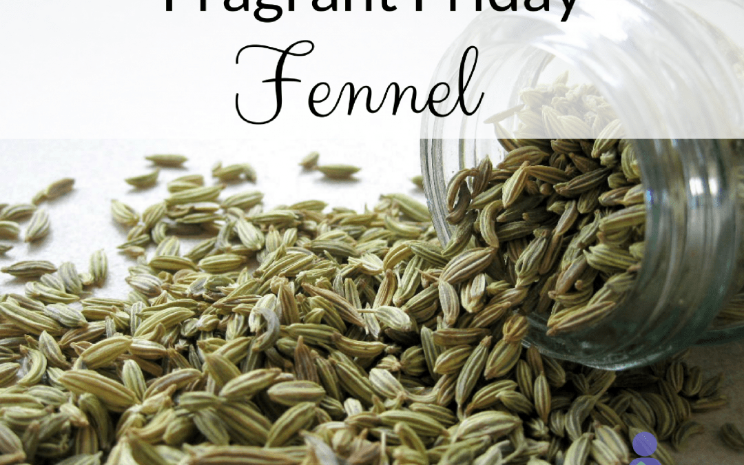 Fragrant Friday: Fennel (Foeniculum vulgare)