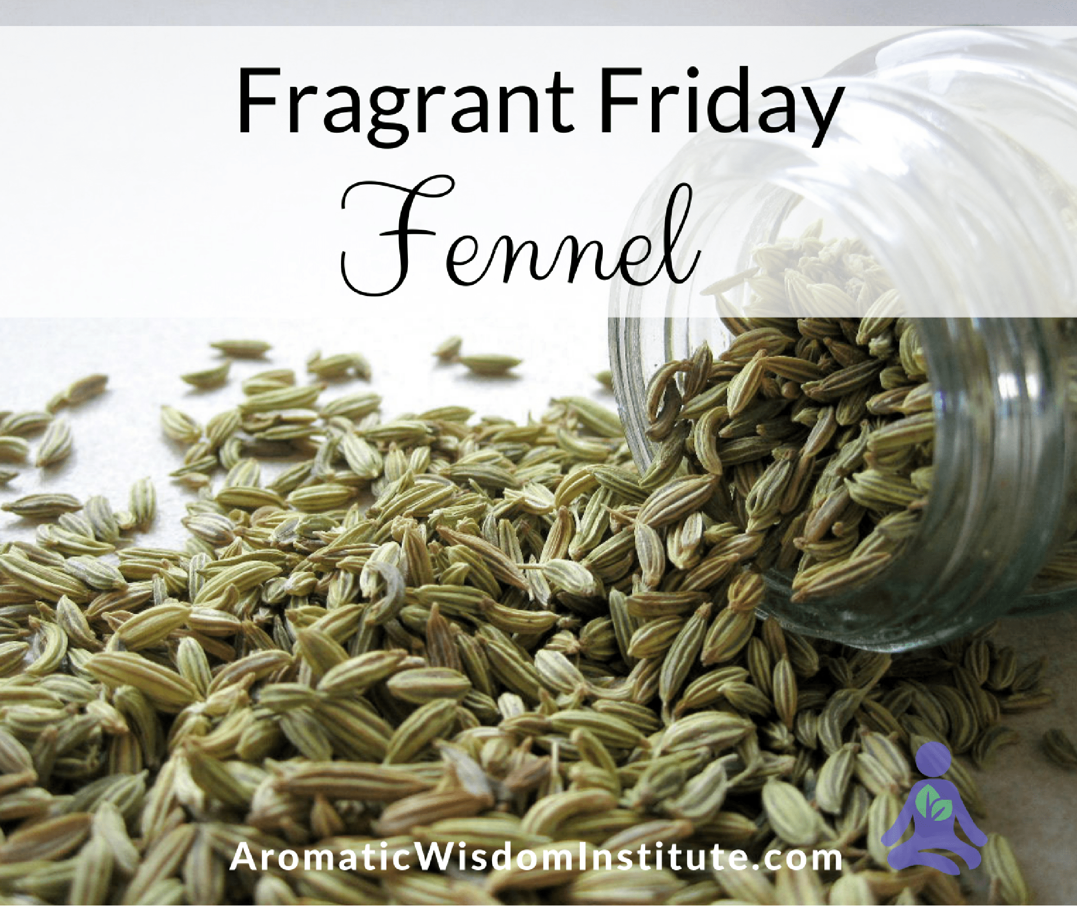 Fragrant-Friday-Fennel-
