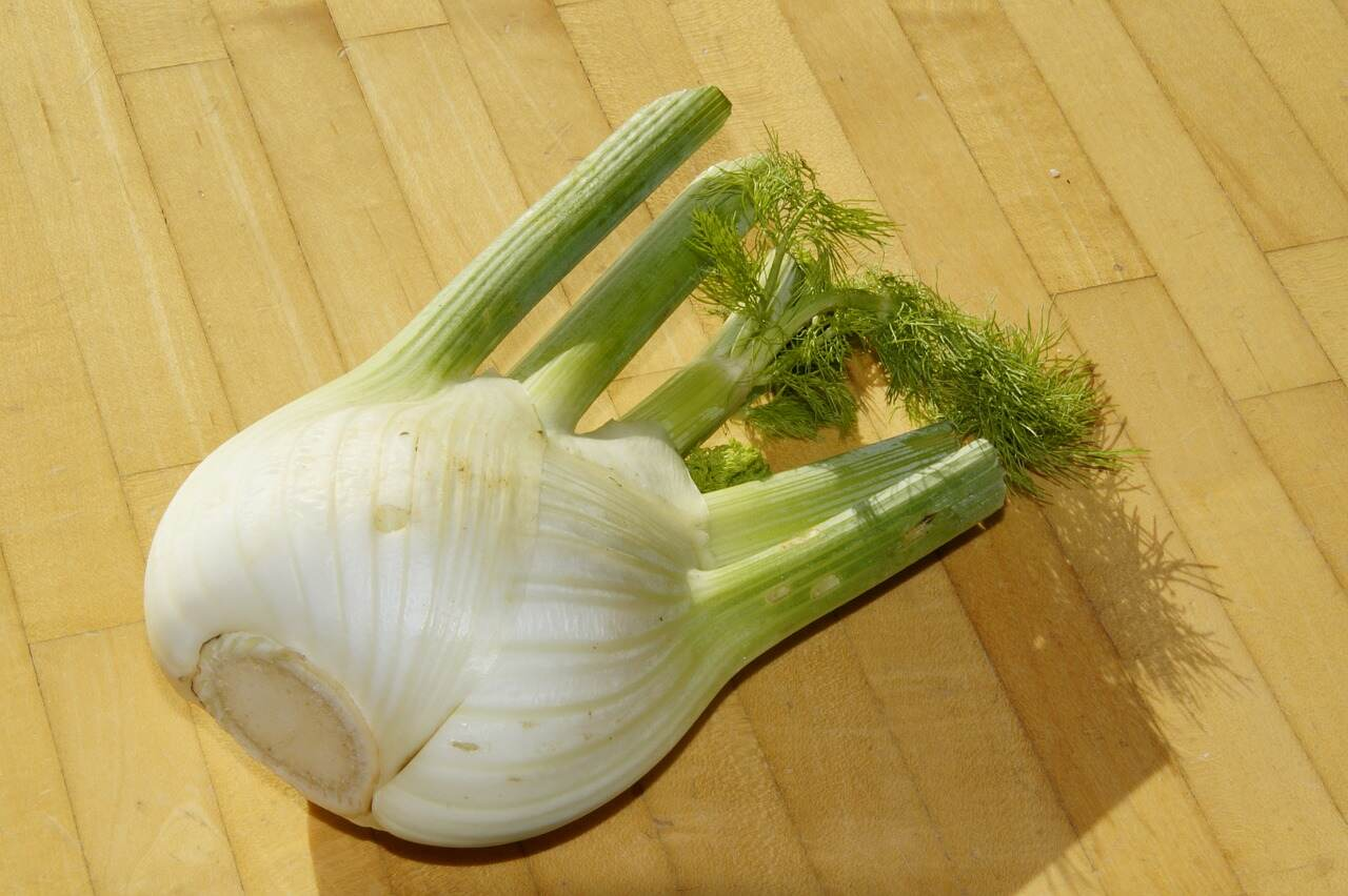 fennel-cutting-board-pixabay