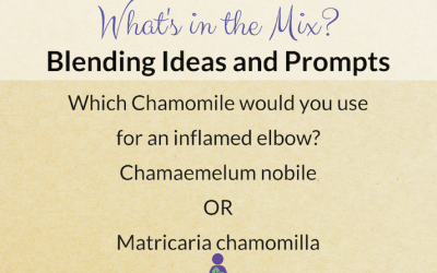 What's in the Mix? Which Chamomile would you use for an inflamed elbow?
