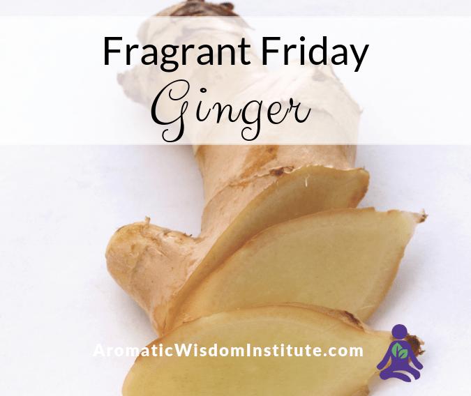 Fragrant Friday: Ginger (Zingiber officinale)