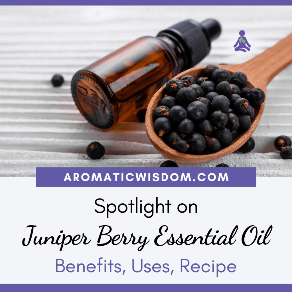 Fragrant Friday: Juniper Berry (Juniperus communis) Essential Oil Profile Spotlight